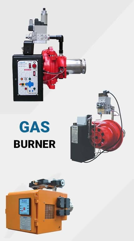 Narayan Gas Burner